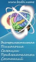 Экспериментальная психология. Селекция привлекательных состояний, Рудашевский Всеволод