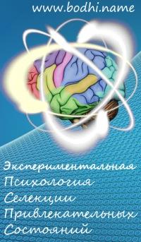 """Обложка книги """"Экспериментальная психология. Селекция привлекательных состояний"""""""