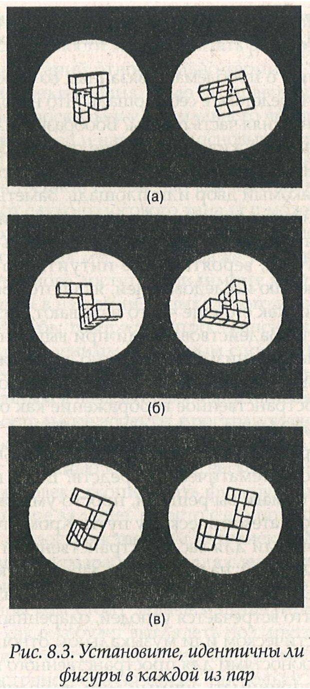 PDF. Структура Разума. Теория множественного интеллекта. Гарднер Г. Страница 339. Читать онлайн