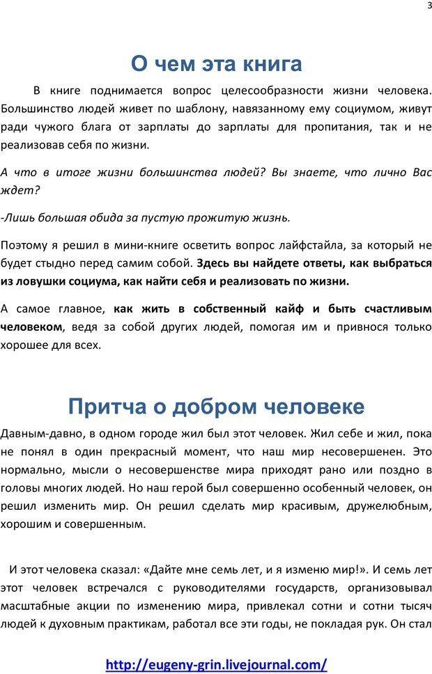 PDF. Лайфстайл счастливых людей или Как быть Альфой. Грин Е. Страница 2. Читать онлайн