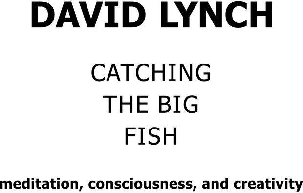 PDF. Поймать большую рыбу. Медитация, осознанность и творчество. Линч Д. К. Страница 1. Читать онлайн