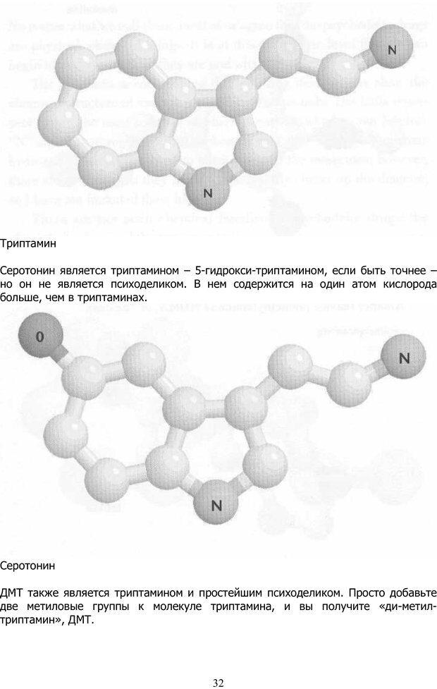 PDF. ДМТ  - Молекула Духа. Страссман Р. Страница 31. Читать онлайн