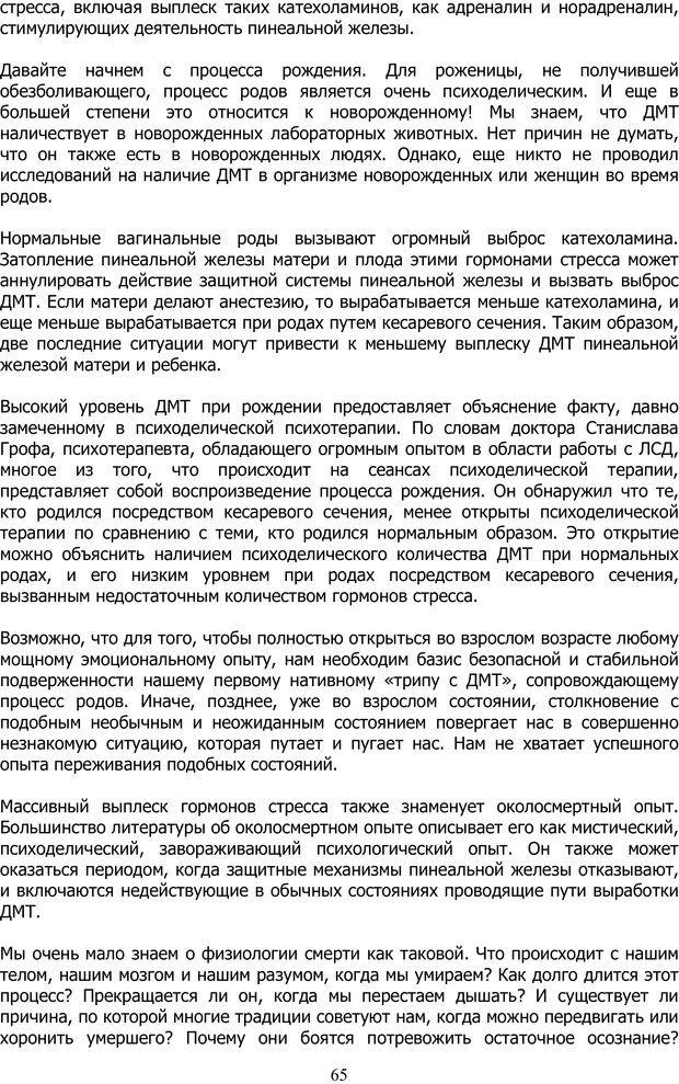 PDF. ДМТ  - Молекула Духа. Страссман Р. Страница 64. Читать онлайн