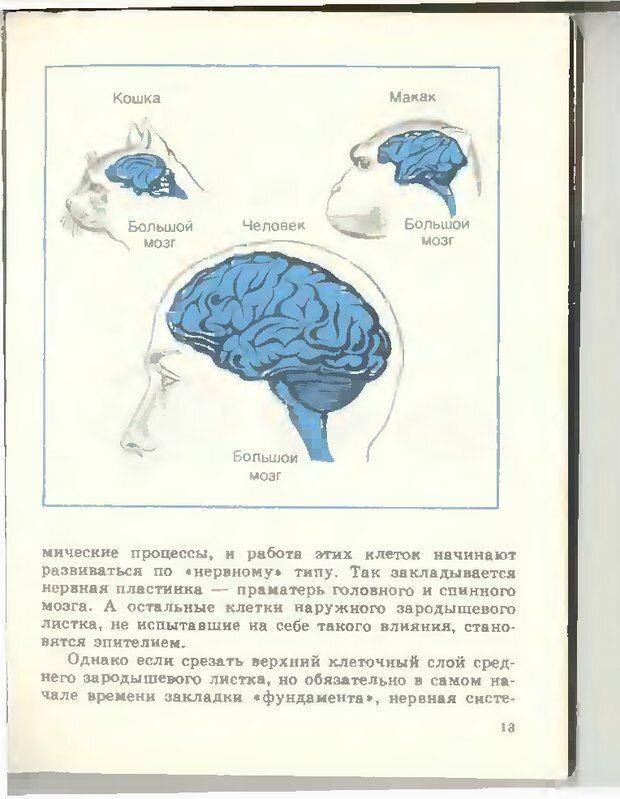 DJVU. Тайны мышления.Генетические корни поведения. Судаков К. В. Страница 14. Читать онлайн