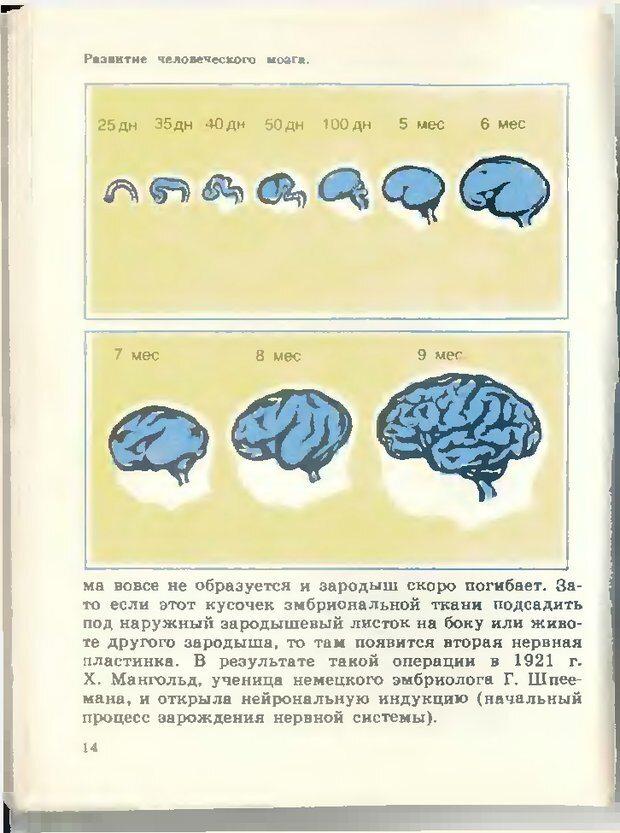DJVU. Тайны мышления.Генетические корни поведения. Судаков К. В. Страница 15. Читать онлайн