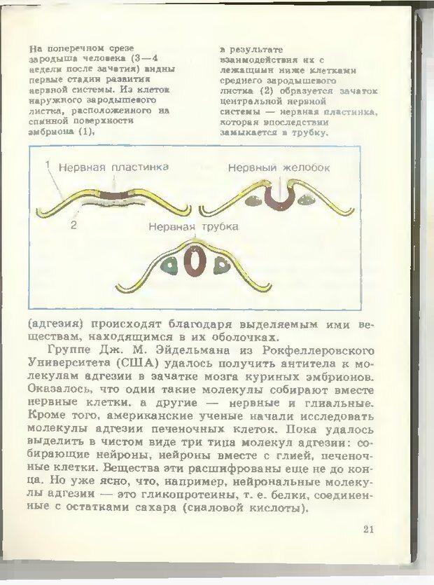DJVU. Тайны мышления.Генетические корни поведения. Судаков К. В. Страница 22. Читать онлайн