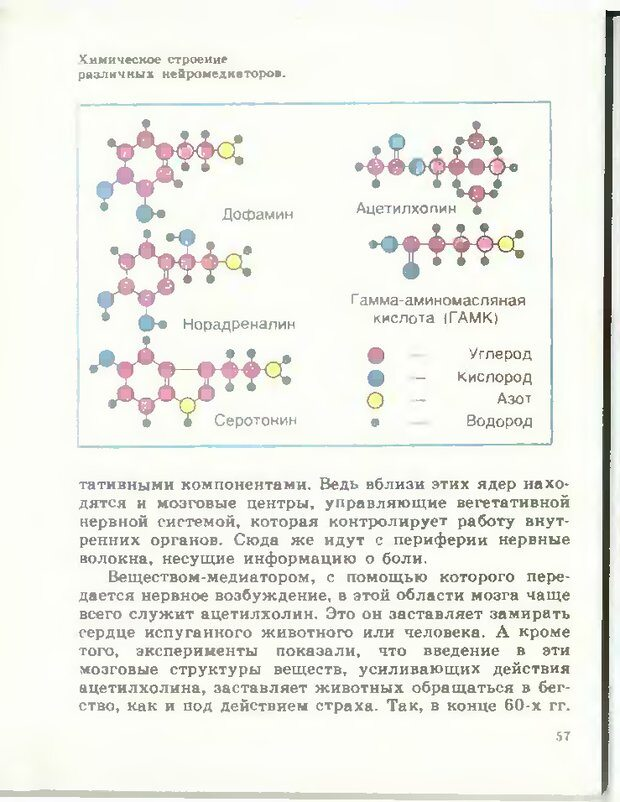 DJVU. Тайны мышления.Генетические корни поведения. Судаков К. В. Страница 58. Читать онлайн