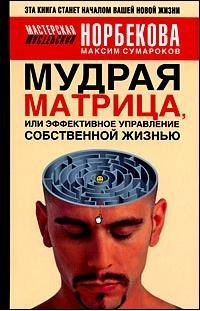 """Обложка книги """"Мудрая матрица, или Эффективное управление собственной жизнью"""""""