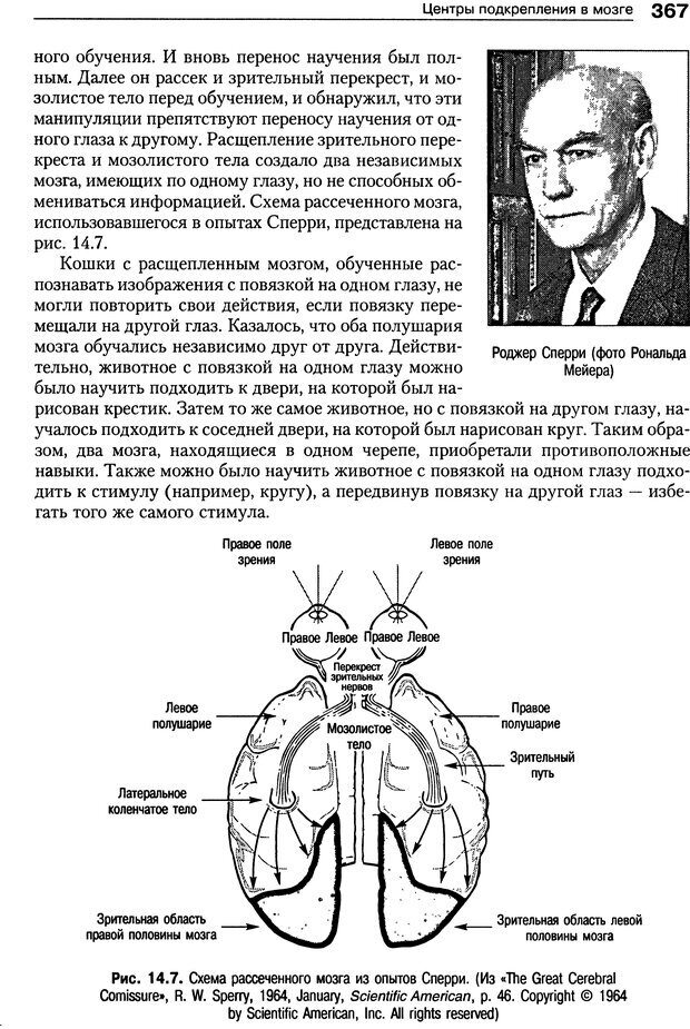 DJVU. Теории научения[6-е издание]. Хегенхан Б. Р. Страница 364. Читать онлайн