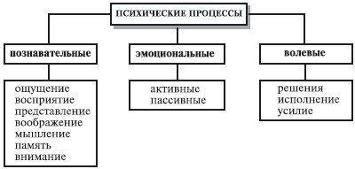 С какими процессами связана деятельность