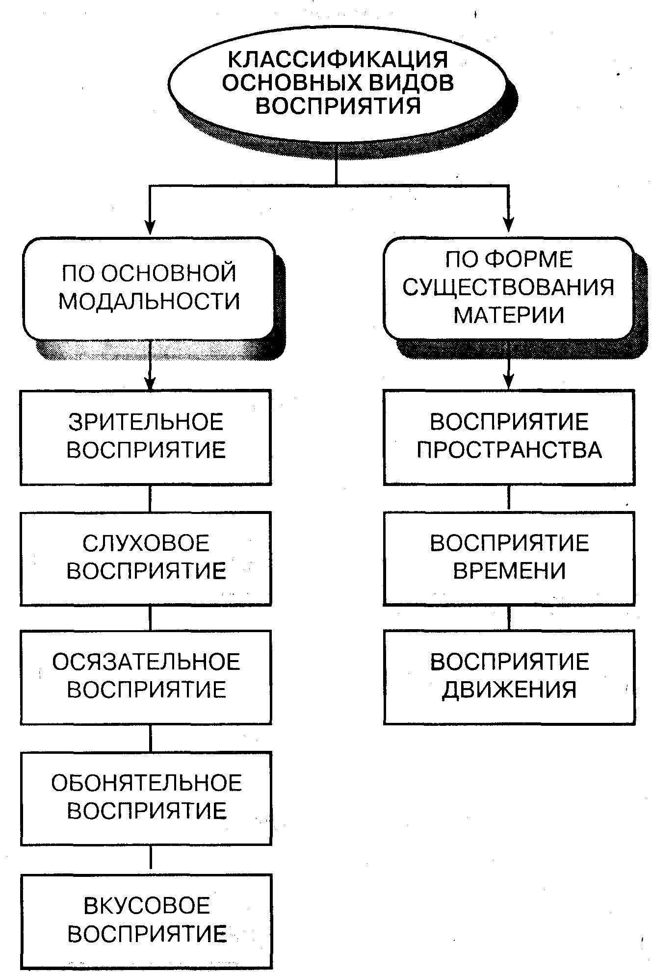 этапы восприятия геометрических фигур сравнение фигур с известными