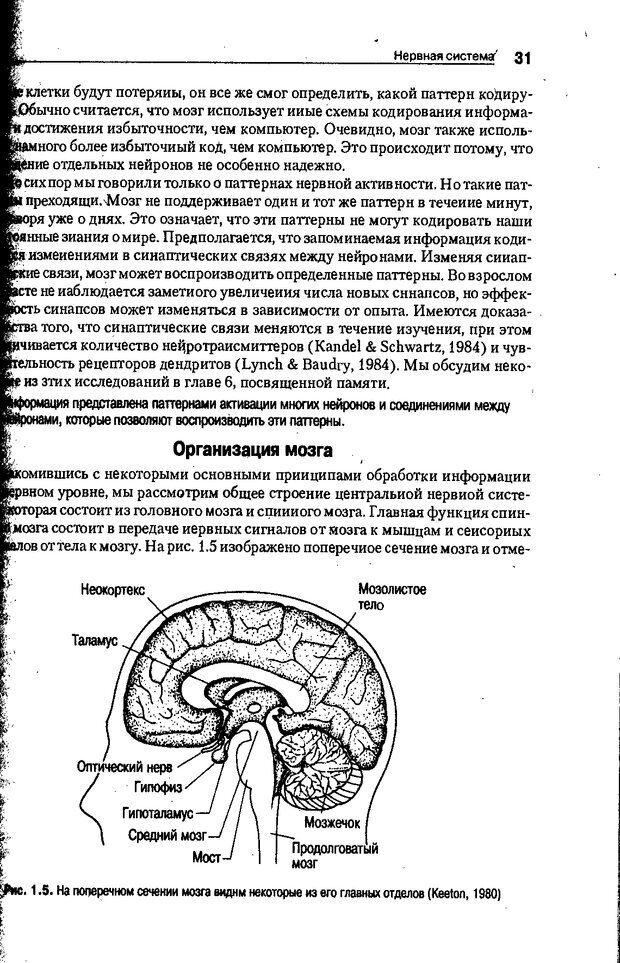 DJVU. Когнитивная психология [5-е издание]. Андерсон Д. Страница 28. Читать онлайн