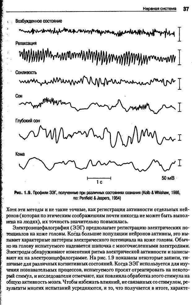 DJVU. Когнитивная психология [5-е издание]. Андерсон Д. Страница 34. Читать онлайн