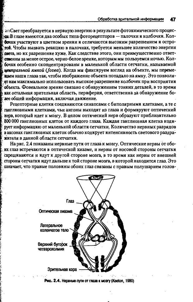 DJVU. Когнитивная психология [5-е издание]. Андерсон Д. Страница 44. Читать онлайн
