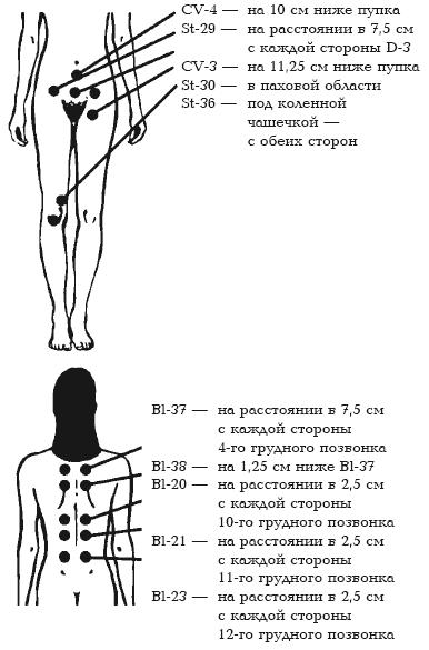 эротические точки на теле у девушек