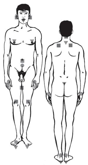 Сексуальное раздражение эрогенных зон женщины