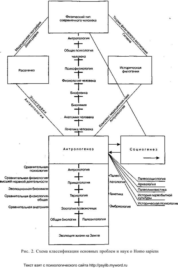 PDF. Человек как предмет познания. Ананьев Б. Г. Страница 50. Читать онлайн