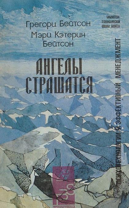 """Обложка книги """"Ангелы страшатся"""""""