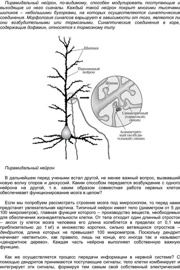 PDF. Загадки и тайны психики. Батуев А. С. Страница 31. Читать онлайн