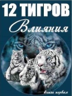"""Обложка книги """"Виктор Орлов - Тигр Внутреннего Разрыва"""""""
